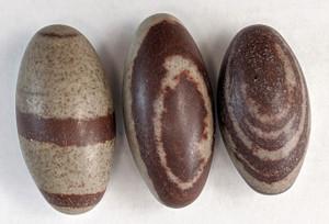 Shiva Lingam Palm stone