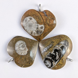Ammonite Heart Pendant