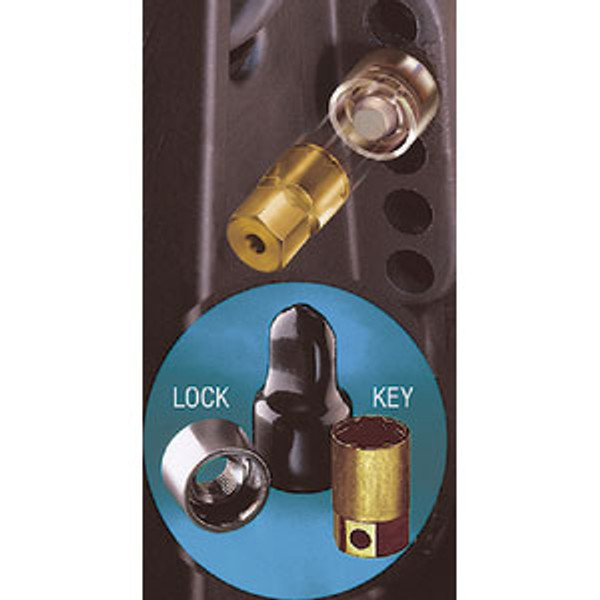 McGuard 74040 Propeller Locks For Stern Drive And Outboard Motors