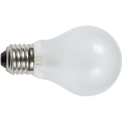 Ancor 24V 50W Medium Screw Bulb (2) 532050