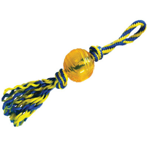 Paws Aboard Rubber Ball with Rope Small 3 T1234
