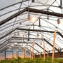 Guardian Series Interior Automated Light Deprivation Greenhouse Kit