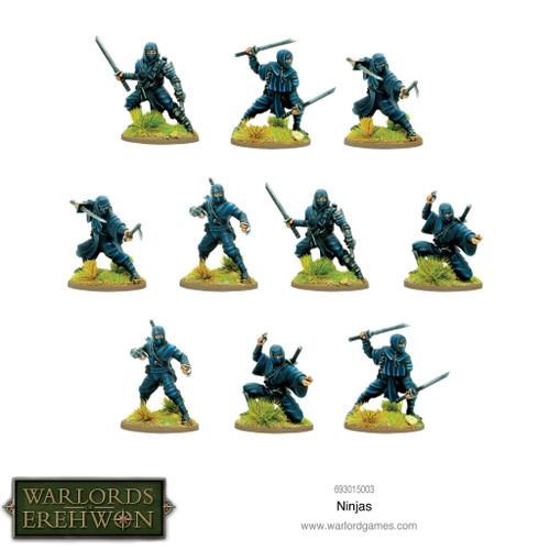 Warlords of Erehwon: Ninjas