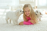 A non toxic cleaner that won't harm children or pets