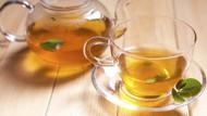 Avoid the Caffeine Crash with Moringa Tea Bags