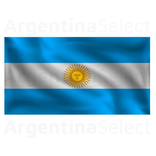 Bandera Argentina c/Refuerzo y Sogas de 45 x 70cm. Argentina Select.