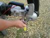 Milenco AL-KO Compact Hitchlock - Fits AL-KO AKS 2004/3004 & AK300 Hitches