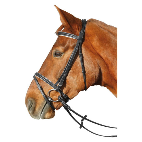 Classic Everyday Bridle