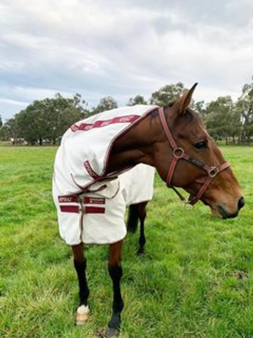 Horseware Amigo Aussie Allrounder