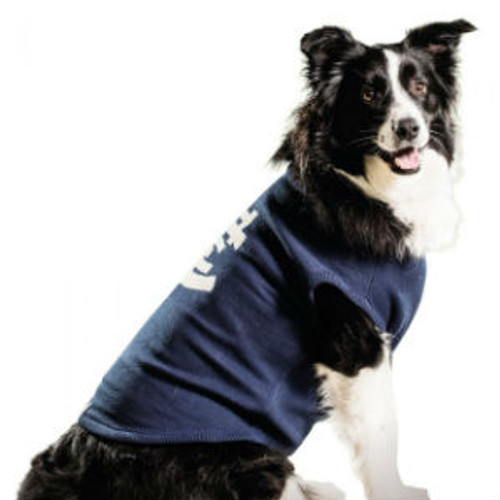 Carlton Dog Coat - Medium