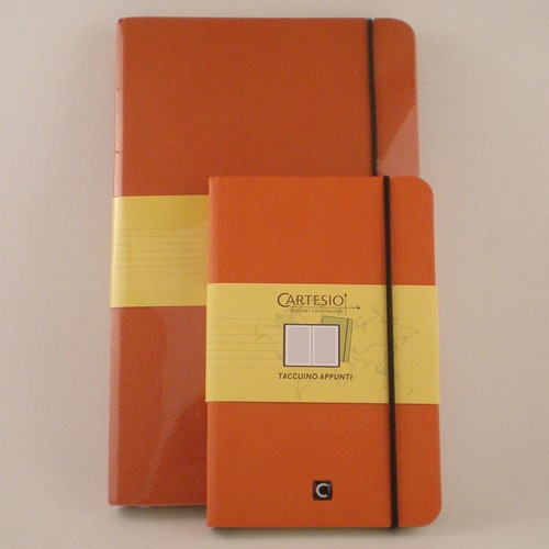 Cartesio notebook