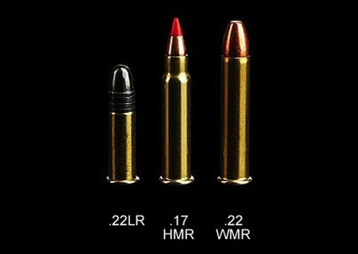 Comparison of 22 LR vs 22 WMR vs 17 HMR - The Best Rimfire Ammo Cartridge