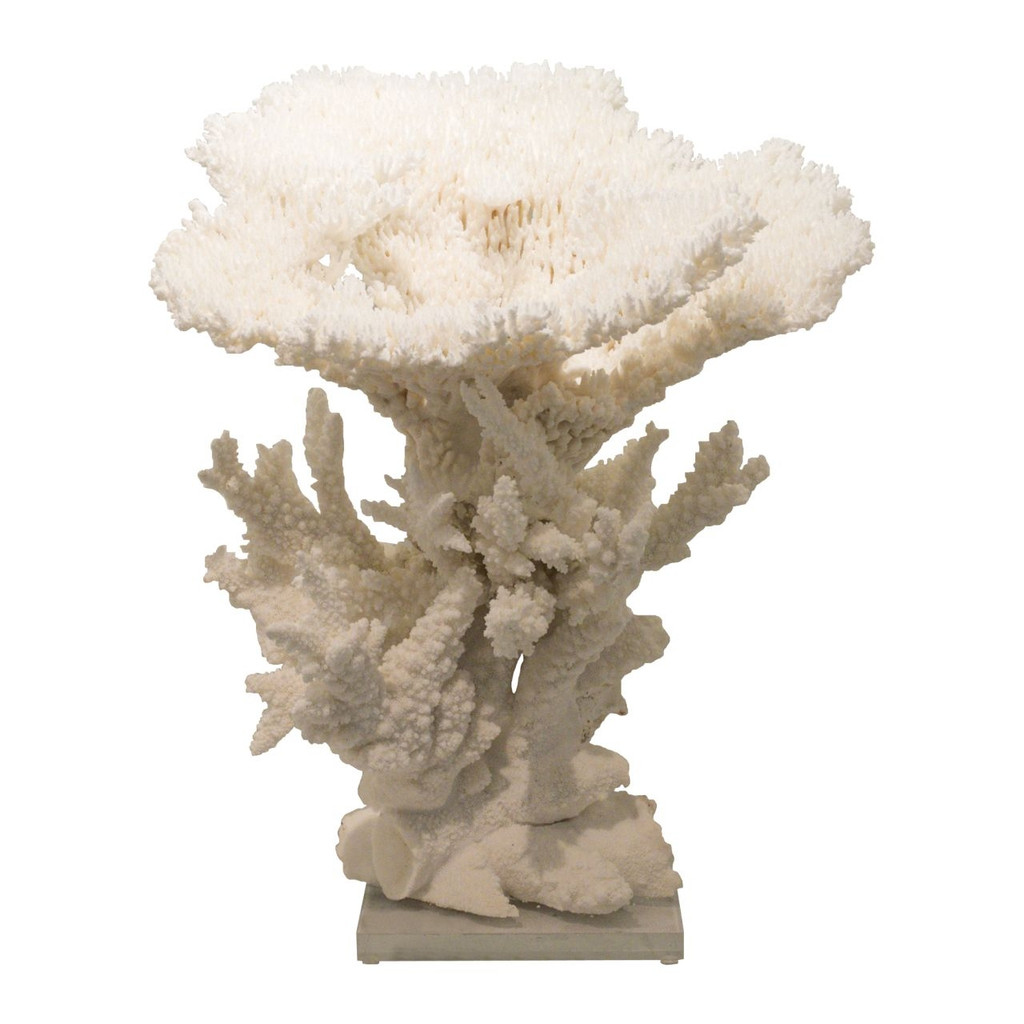 Table Display Coral Creation With Branch On Acrylic Base