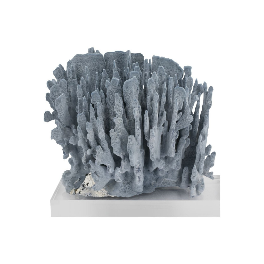 Blue Coral 15-18 Inch On Acrylic Base