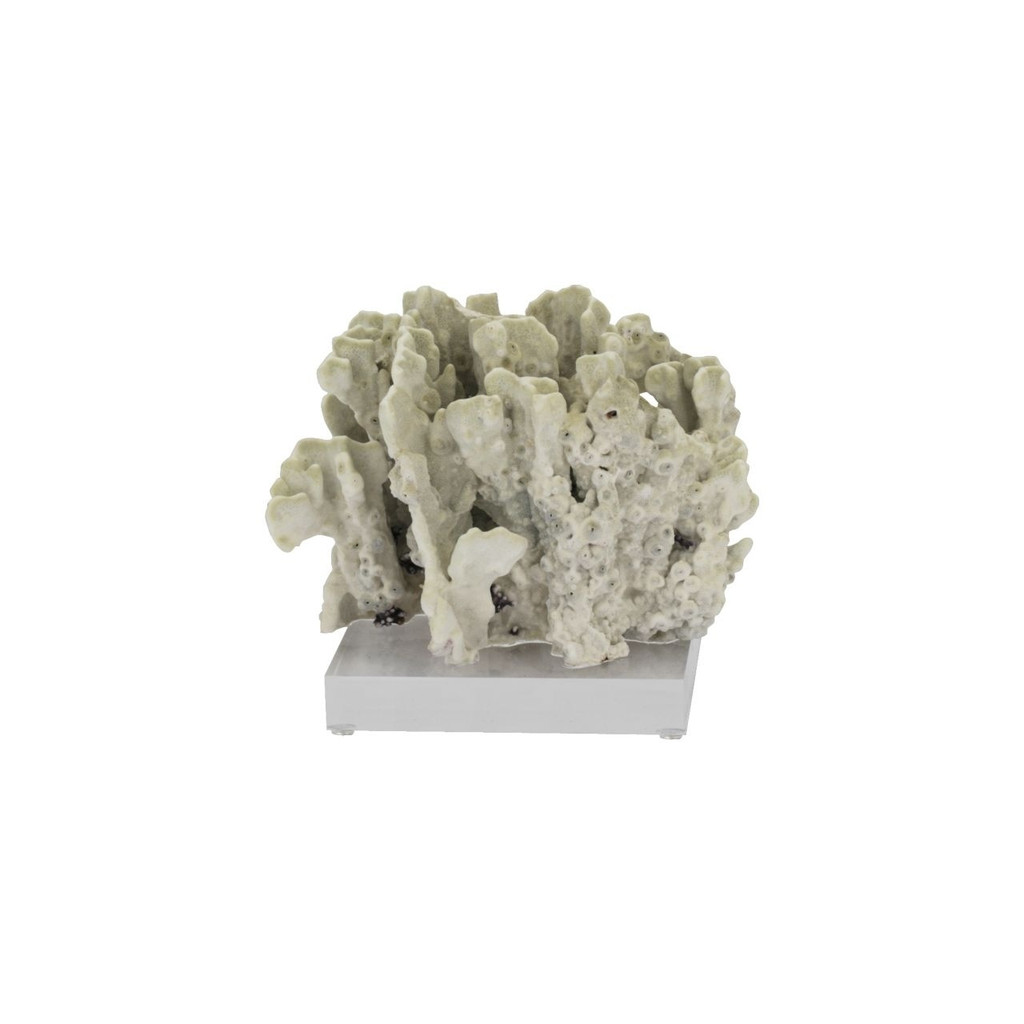 Green Fire Slab Coral On Acrylic Base - 3 Sizes