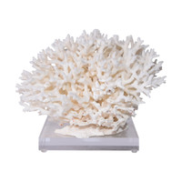 Birdsnest Coral On Acrylic Base - 3 Sizes