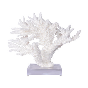 Branch Coral On Acrylic Base - 3 Sizes