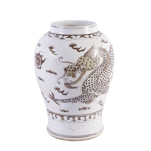 Brown Porcelain Hong Wu Flaring Rim Jar Dragon Motif