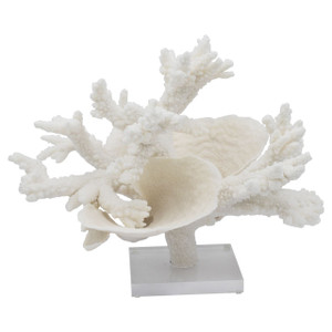 Branch Cup Combo Coral Creation On Acrylic Base