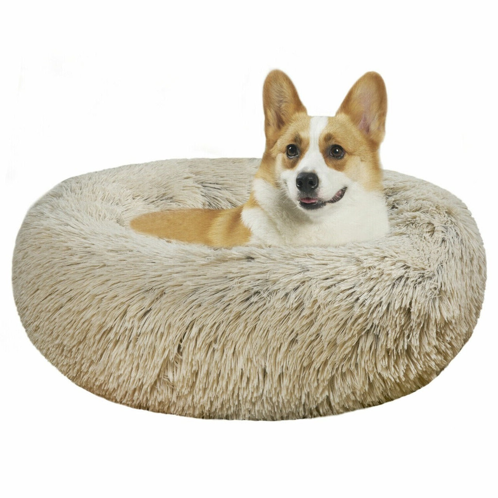 Clear Acrylic lucite modern Small Round Pet Bed with Grey Cushion