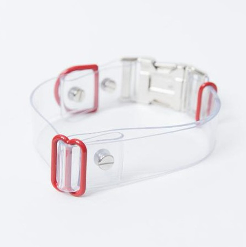 Clear Acrylic Pet Collar with Red or Green Metal