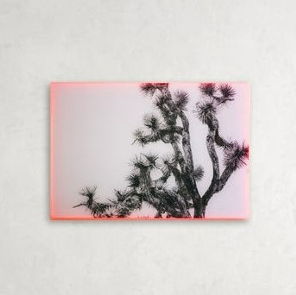 Black and White Tree in Neon Acrylic Frame, Frame