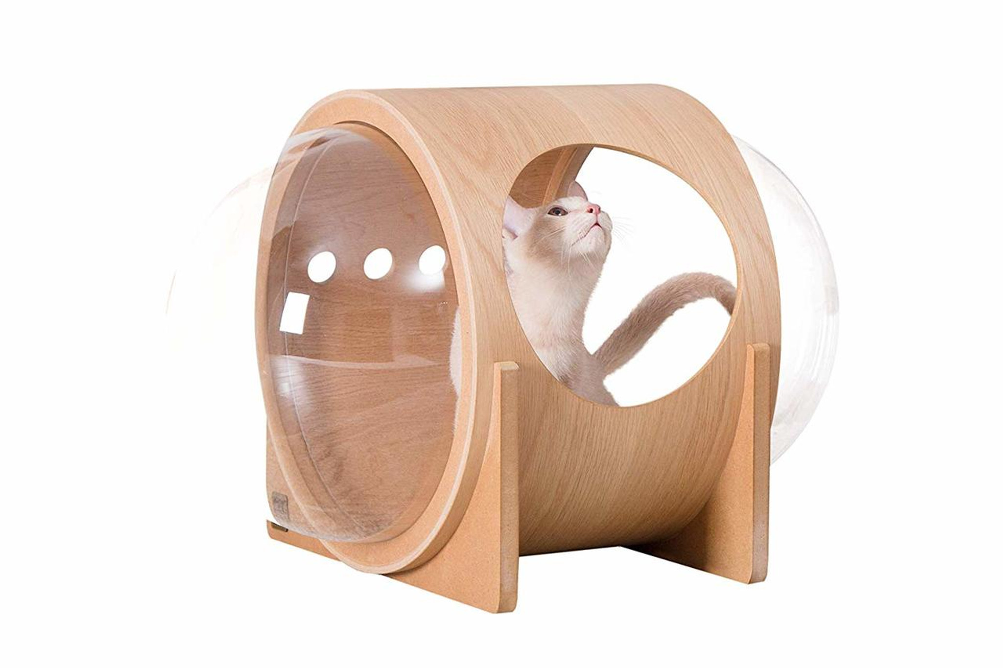 best mid century modern bubble cat bed with clear acrylic lucite plastic windows doors cool sleek hip pet furniture myzoo/amazon spaceship alpha