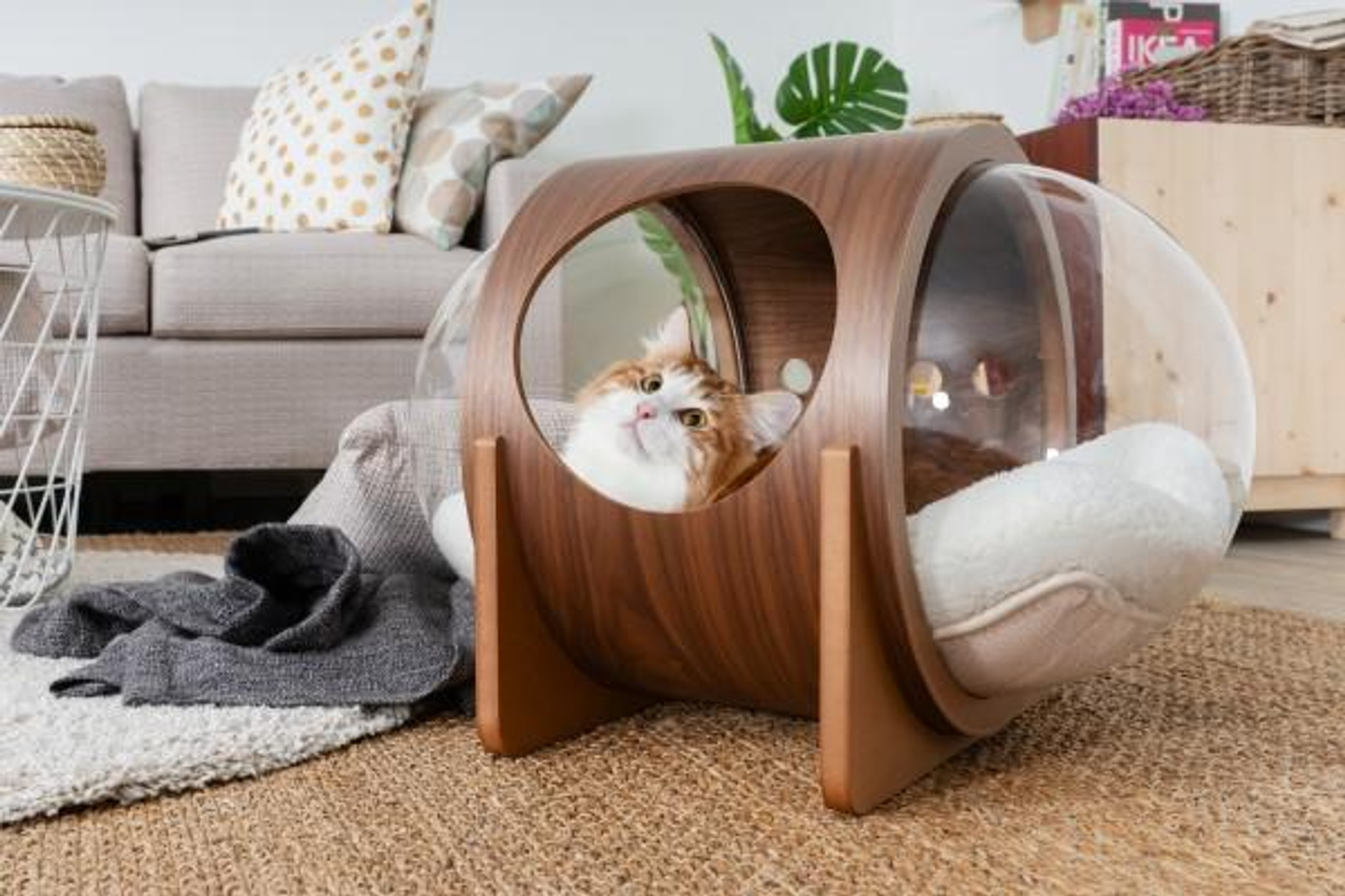 clear acrylic cat perch with clear acrylic lucite plastic window bubbles doors wood round cool modern hip pet furniture bed house
