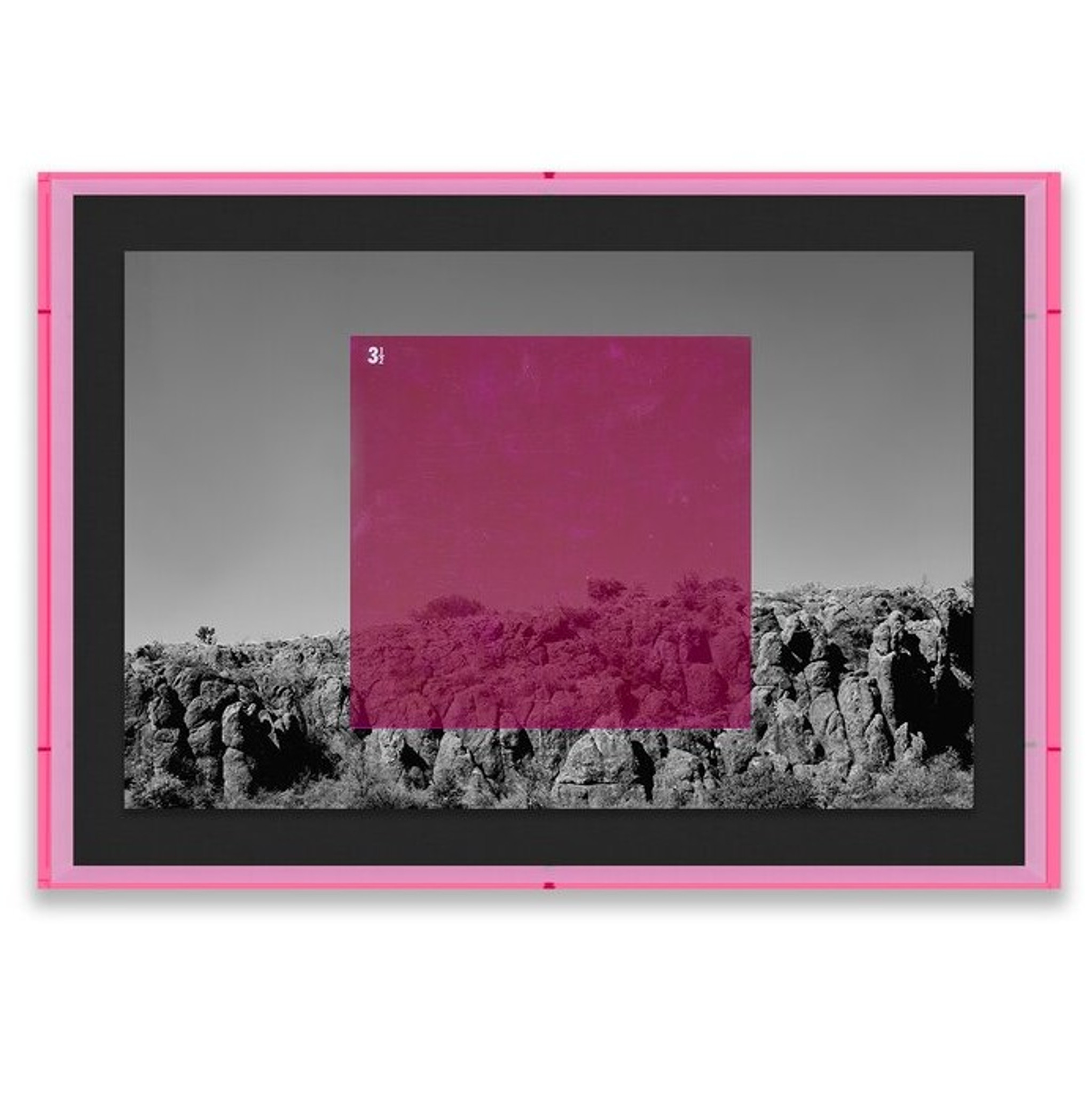 Pink on BW' Graphic Art Four Hands Art Studio black white photography lucite frame
