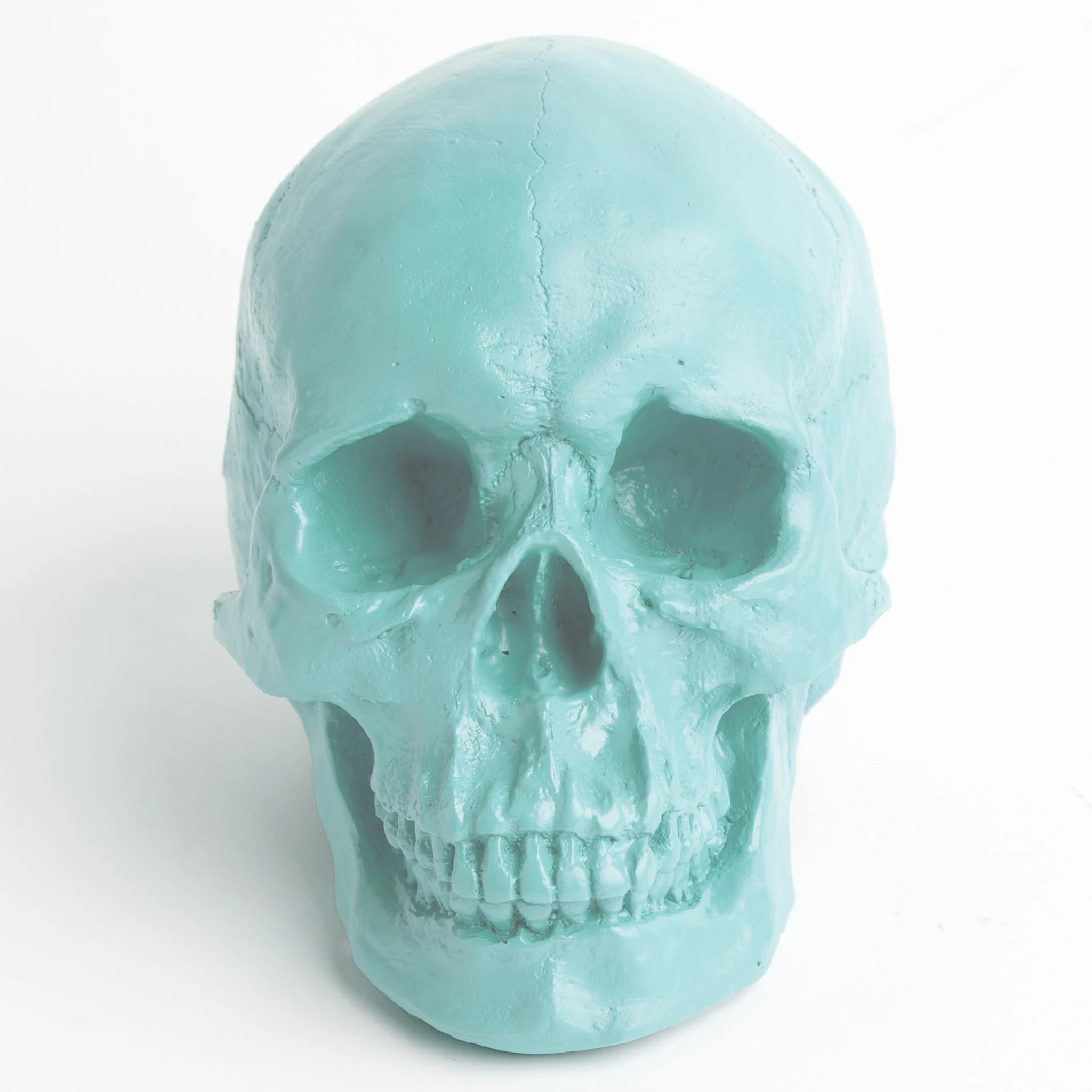 modern faux skull clear lucite acrylic colors metallic table top fun mod hip accessory kids