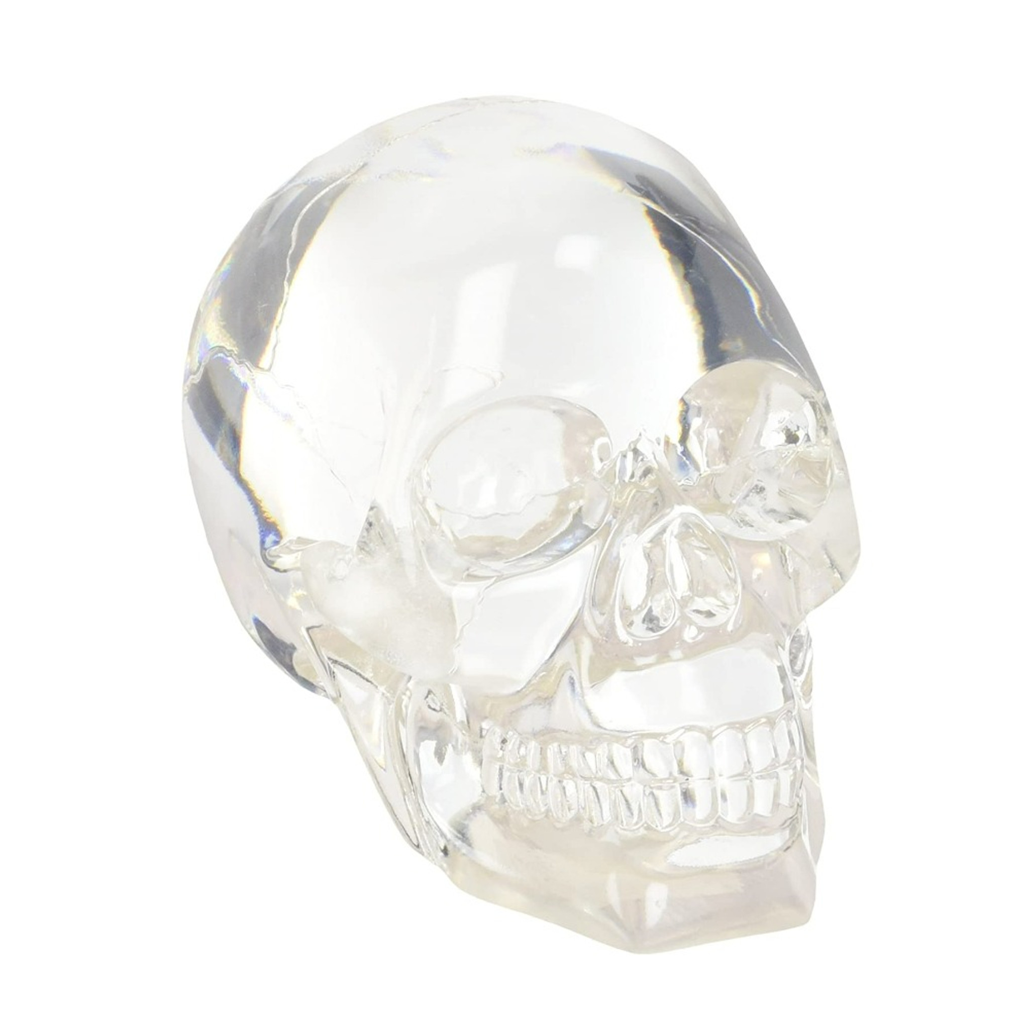 Decorative Skull Sculpture in Color Resin,   Options