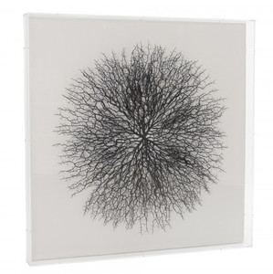 zentique  Abstract Black Branches Framed Wall Art in Clear Shadowbox grey wall art