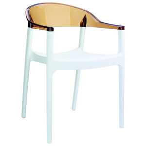Set of 2 Indoor Outdoor Acrylic 2 Tone Dining Chair,