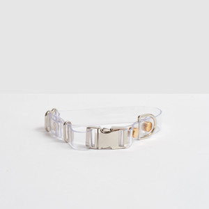 Clear Acrylic Pet dog Collar with color metal hardware brass gold