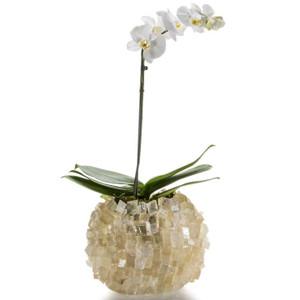Large White Selenite Crystal Modern Vase