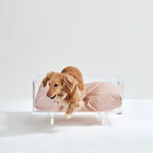 Clear Acrylic Dog Bed by Hiddin