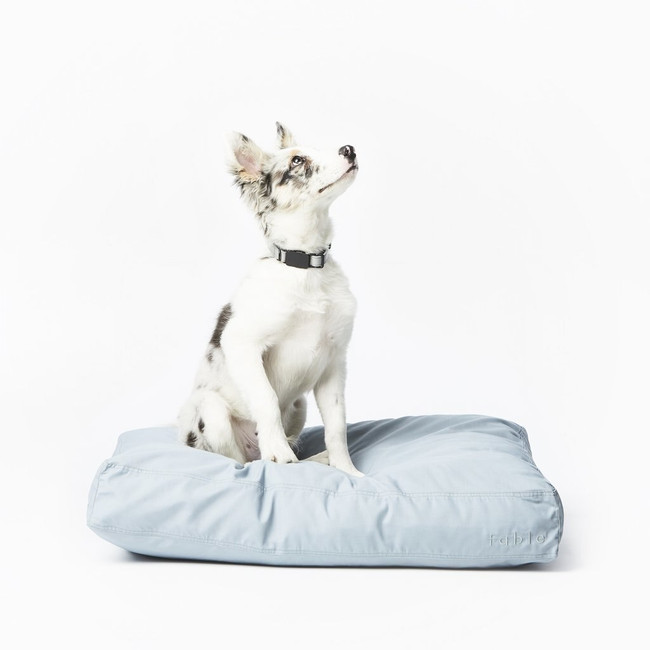 waterproof cushion for pet bed in modern fabric clean simple sleek good looking floor cushion dog