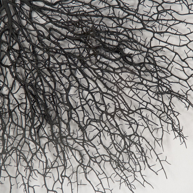 zentique  Abstract Black Branches Framed Wall Art in Clear Shadowbox lucite frame