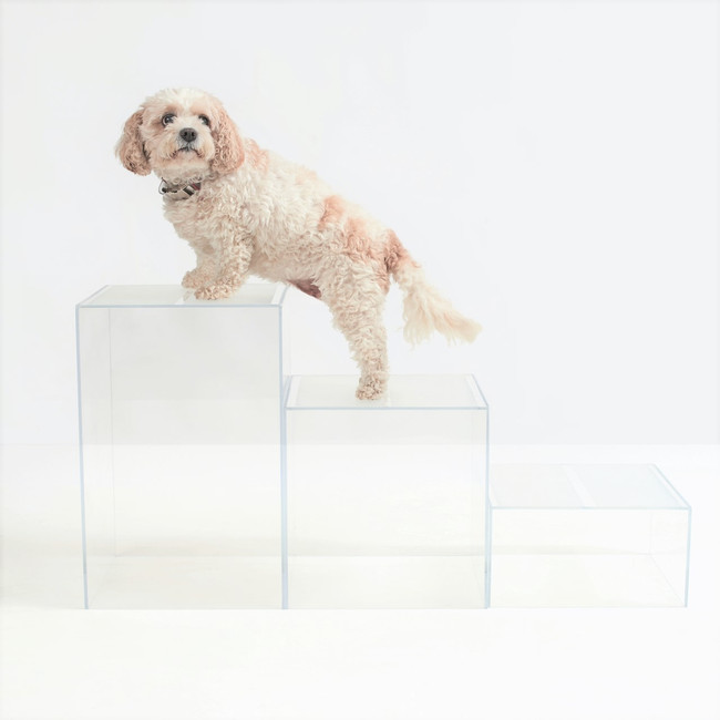 Clear Acrylic Pet Stepping Cube Set, by Hiddin
