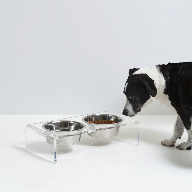 Clear Acrylic Double Bowl Pet Feeder with Silver Bowls by Hiddin