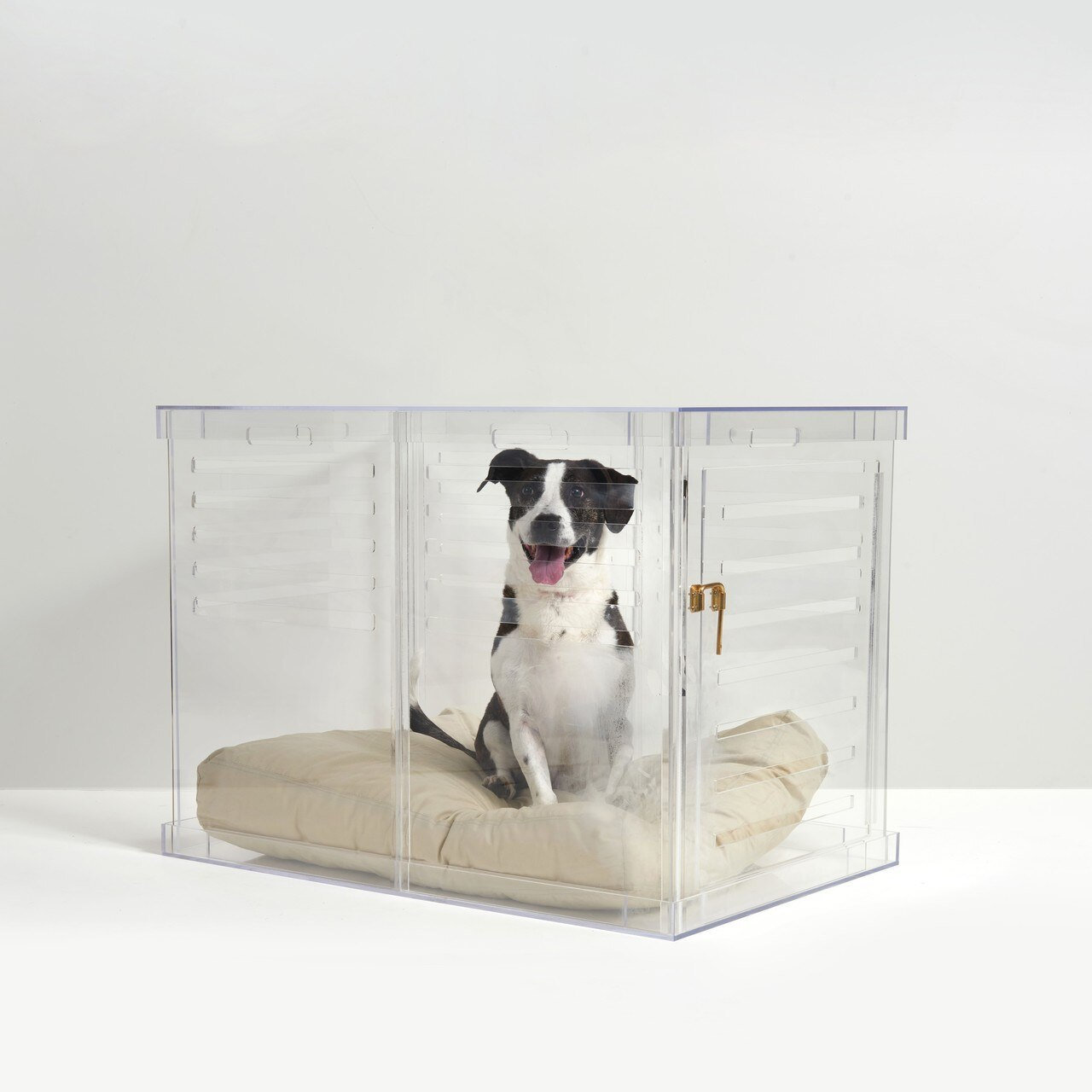 crate-bingo-large-gold-lock-haddie-laughing-square-clear-acrylic-modern-lucite-pet-dog-crate.jpg