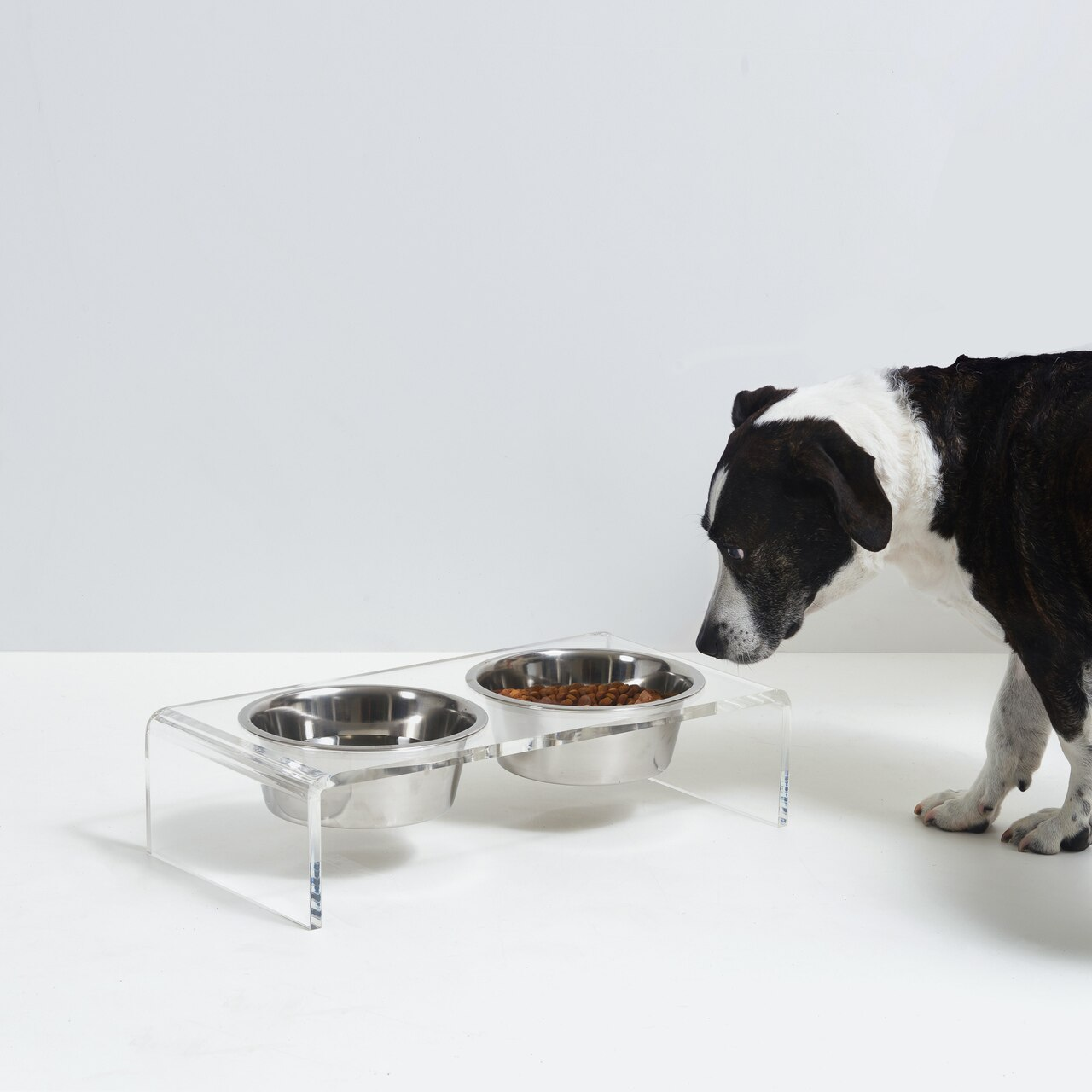 hiddin.co-clear-acrylic-lucite-double-dog-bowl-modern-feeder-bowls-elevated.jpg
