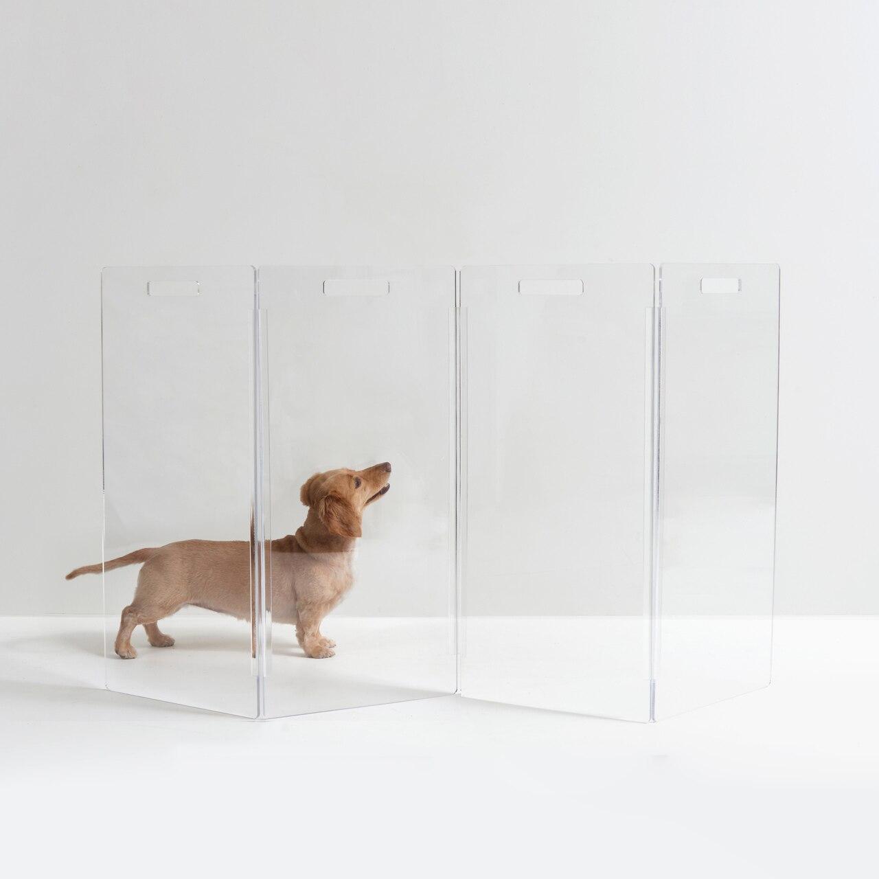 hiddin.co-clear-acrylic-lucite-modern-zig-zag-freestanding-pet-dog-barrier-gate.jpg
