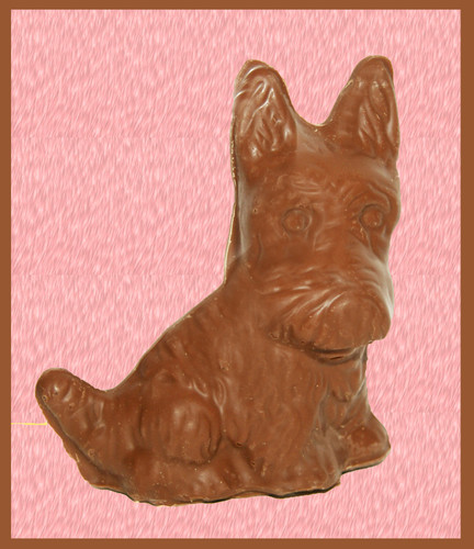 5oz Solid Milk Chocolate Scotty Dog