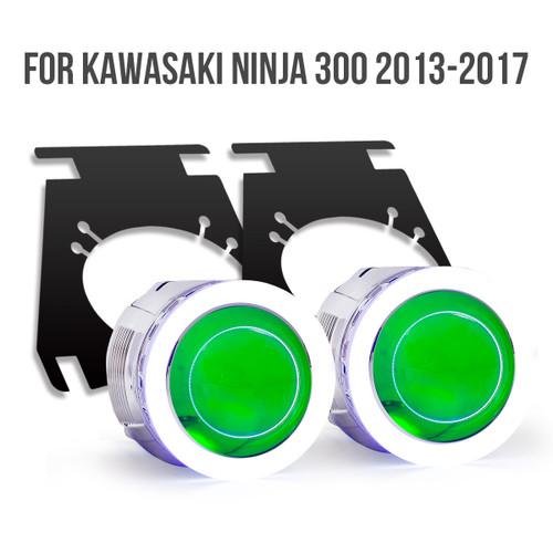 Kawasaki Ninja 300 2013-2018 projector