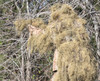 Red Rock Outdoors Sniper Style with No String Front Ghillie Suit Desert / Grassland Camo 70926 D