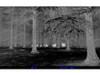 Pulsar Quantum HD38A 2x4x32 Thermal Imaging Monocular PL77323
