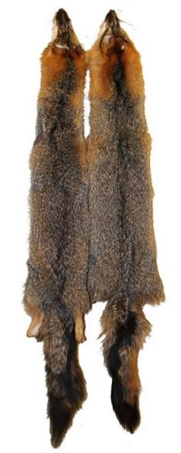 Tanned Grey Fox Pelt / Fur TFgf