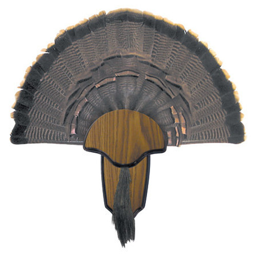 H.S. Strut Turkey Fan & Beard Mounting Kit 00849