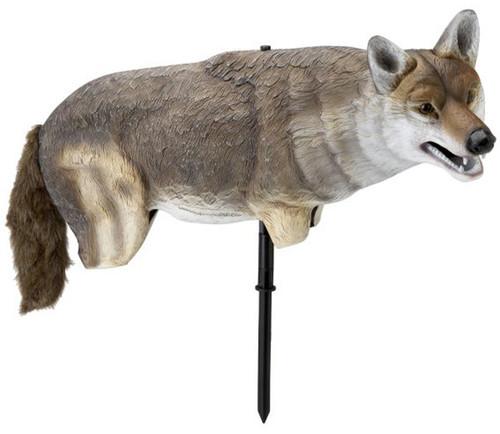 Lucky Duck Yote 3D Coyote Predator Decoy 50507-6
